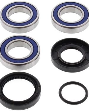 25-1034 Wheel Bearing Kit (Rear) – All Ball Racing Product