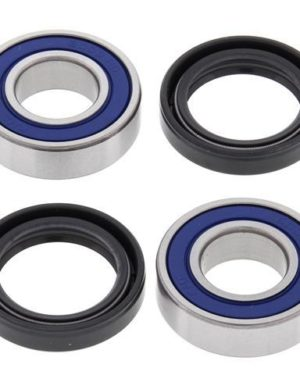 25-1063 Wheel Bearing Kit (Front) – All Ball Racing Product