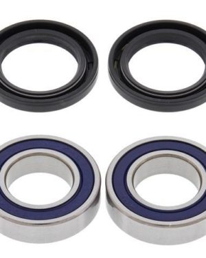 25-1079 Wheel Bearing Kit (Front) – All Ball Racing Product