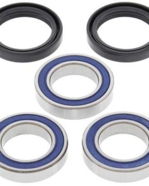 25-1250 Wheel Bearing Kit (Rear) – All Ball Racing Product