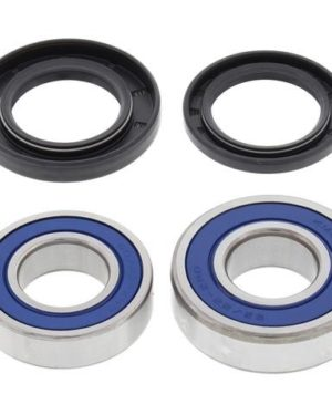 25-1252 Wheel Bearing Kit (Rear) – All Ball Racing Product