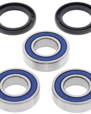 25-1255 Wheel Bearing Kit (Rear) – All Ball Racing Product