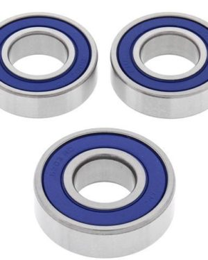 25-1345 Wheel Bearing Kit (Rear) – All Ball Racing Product