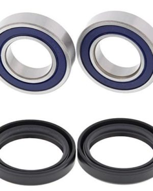 25-1363 Wheel Bearing Kit (Front) – All Ball Racing Product