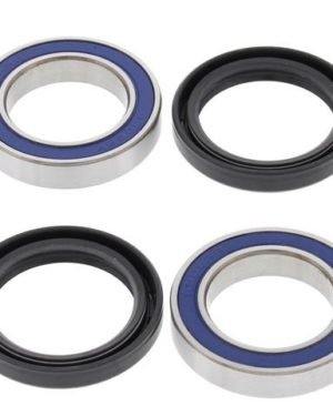 25-1402 Wheel Bearing Kit (Front) – All Ball Racing Product