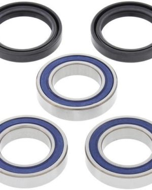 25-1406 Wheel Bearing Kit (Rear) – All Ball Racing Product