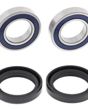 25-1482 Wheel Bearing Kit (Front) – All Ball Racing Product