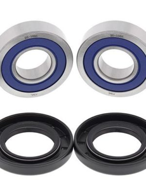 25-1653 Wheel Bearing Kit (Front) – All Ball Racing Product