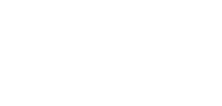 srm-companies-richa